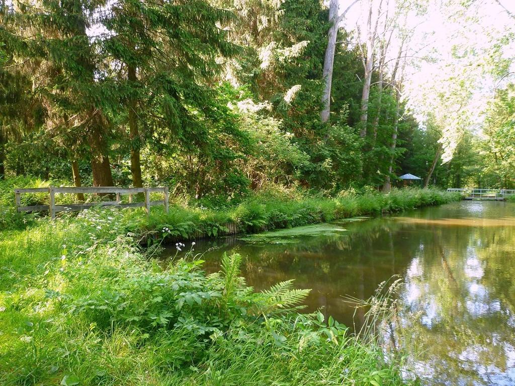 Omgeving Kampeerboerderij De Reehoeve, Het Schut 2